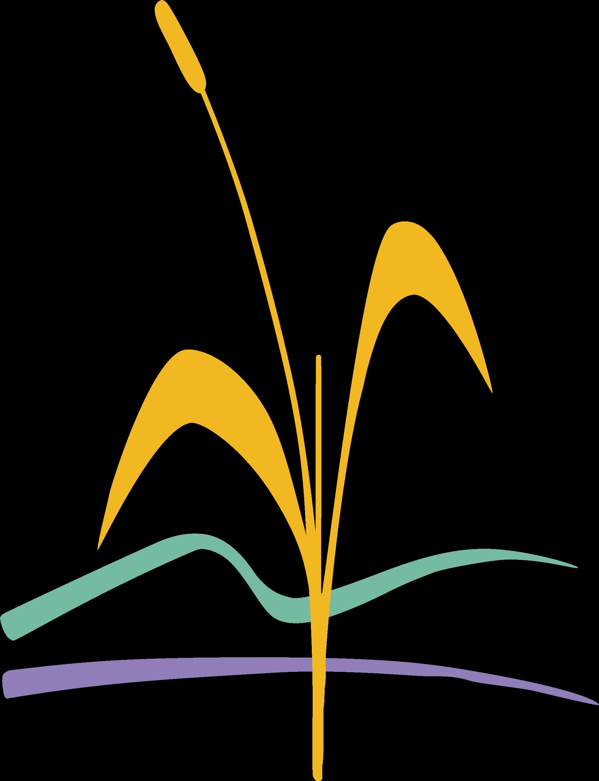 logo_roseliere